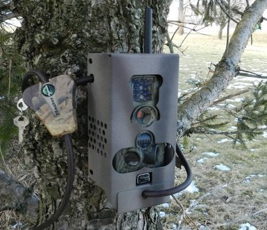 Ltl Acorn 6210mm Amp 6210mc Trail Camera Security Lock Box