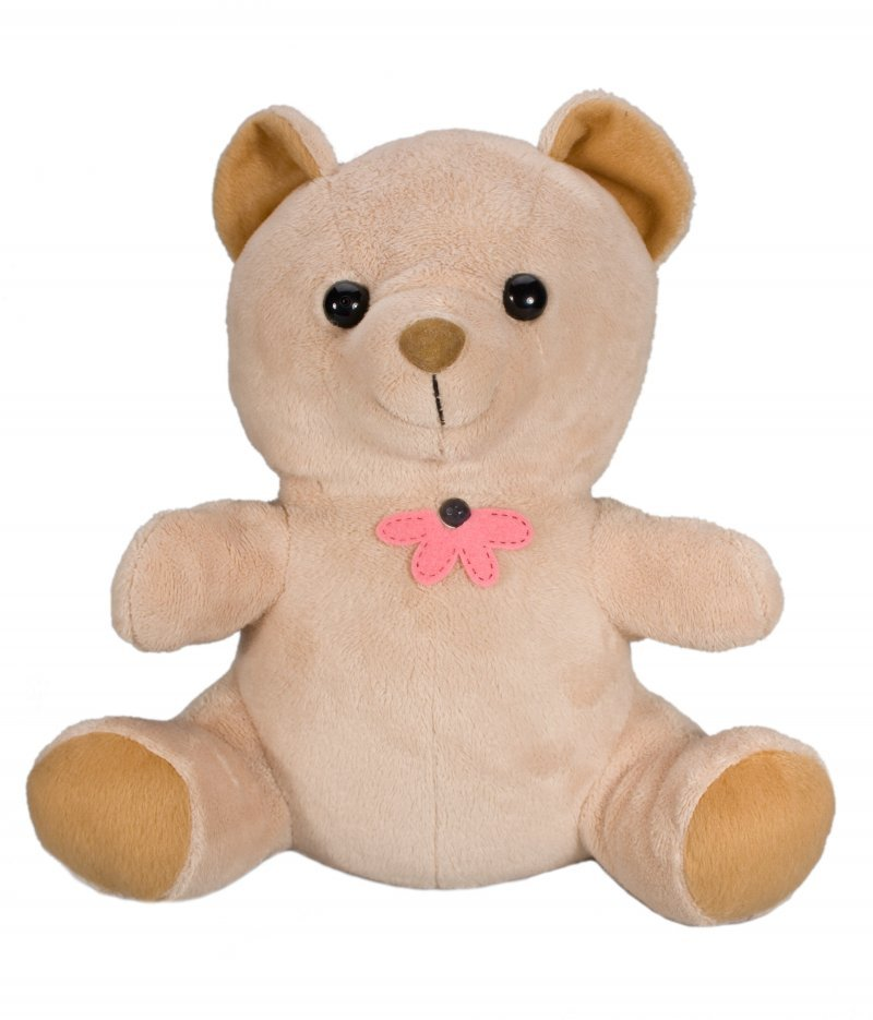 Xtreme Life HD 4K Hidden Teddy Bear Camera DVR