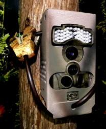LTL Acorn 6310 Trail Camera Security Lock Box