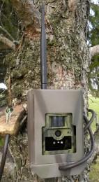 ScoutGuard MG883G-12m Trail Camera Security Lock Box