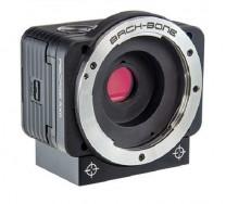 "Sony RX0 Ribcage Backbone Mod Micro 4/3 1"" Sensor Action Camera"
