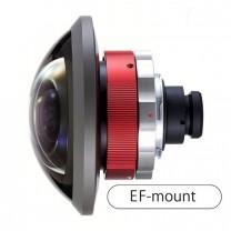 Entaniya HAL 250 Degrees 4.3 EF Mount Fish Eye Lens