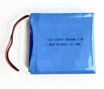 PatrolEyes Replacement Battery for PE-MAX and PE-EDGE